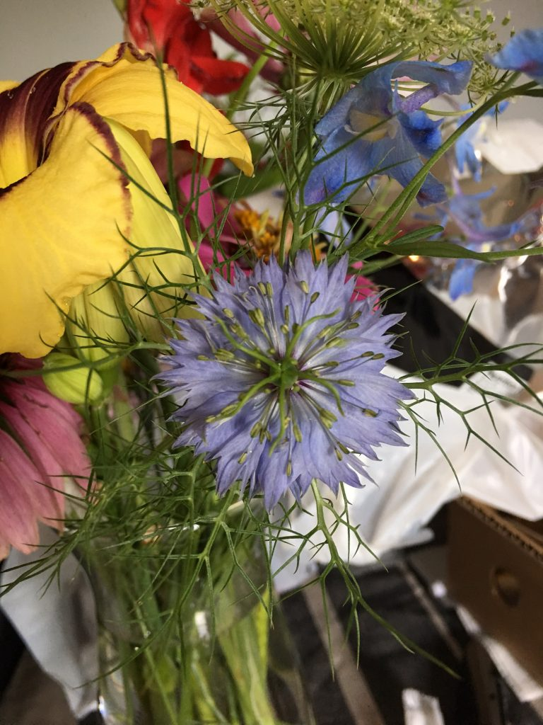 Blue Nigella in Arrangement