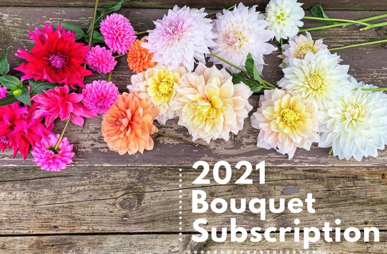 The Flower Kitten Bouquet Subscription – 2021