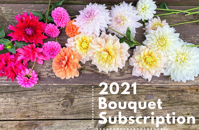 The Flower Kitten Bouquet Subscription – 2021